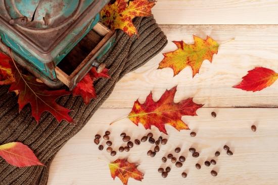 Obraz Podzim je tu.