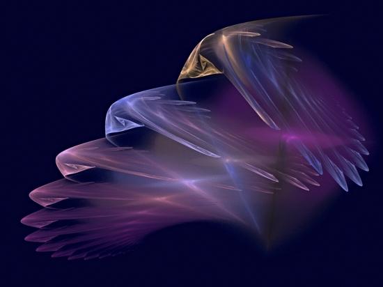 Obraz Andělská křídla