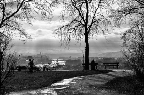 Obraz Pražské mosty z vyhlídky