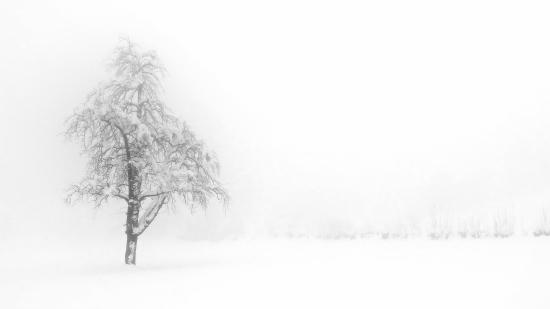 Obraz Mlhavé ráno I