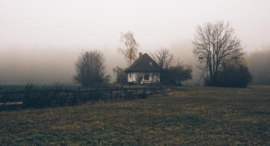 Obraz Na samotě