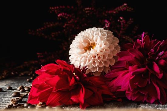 Obraz Květinové zátiší.
