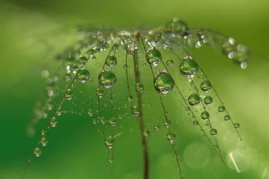 Obraz Vodopád perel