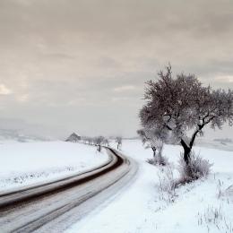 Obraz Mrazivá cesta