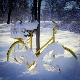 Obraz Zimní kolo