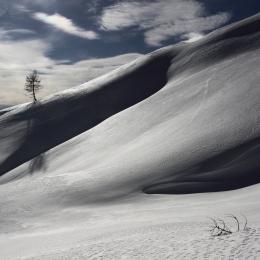 Obraz Na sněhových pláních