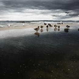 Obraz Ostsee