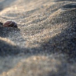 Obraz V písku