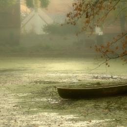 Obraz Raní opar nad vesnickým rybníkem