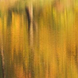 Obraz Podzim na hladině