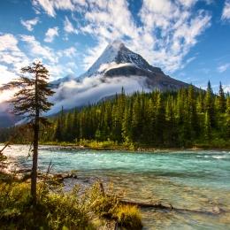 Obraz Mount Robson - Kanada